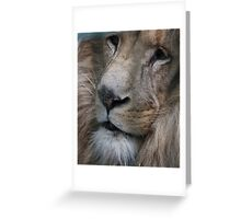 Lion King - Her Majesty  Greeting Card