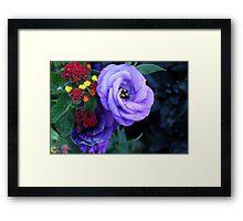Lisianthus Flower Framed Print