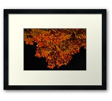 ablaze - fall leaves at night Framed Print