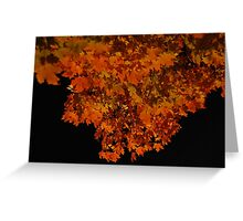 ablaze - fall leaves at night Greeting Card