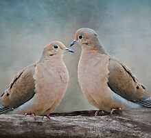 Love Doves by Bonnie T.  Barry