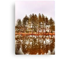 Mirror Images Of Trees Canvas Print