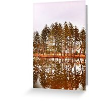 Mirror Images Of Trees Greeting Card