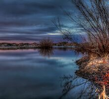 Twilight on the Side by Bob Larson
