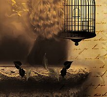 Her Cages are Empty by Carmen Holly