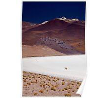 Salt Lake, Atacama, Chile Poster