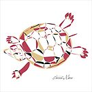 Tortue / Turtlle by clemz