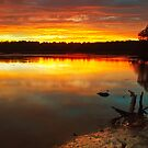 Burning Lake by Mark  Lucey