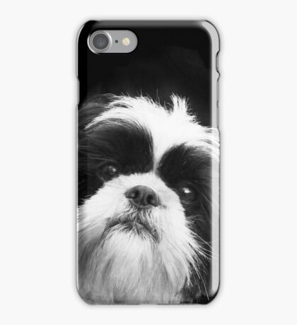 Shih Tzu Dog iPhone Case/Skin
