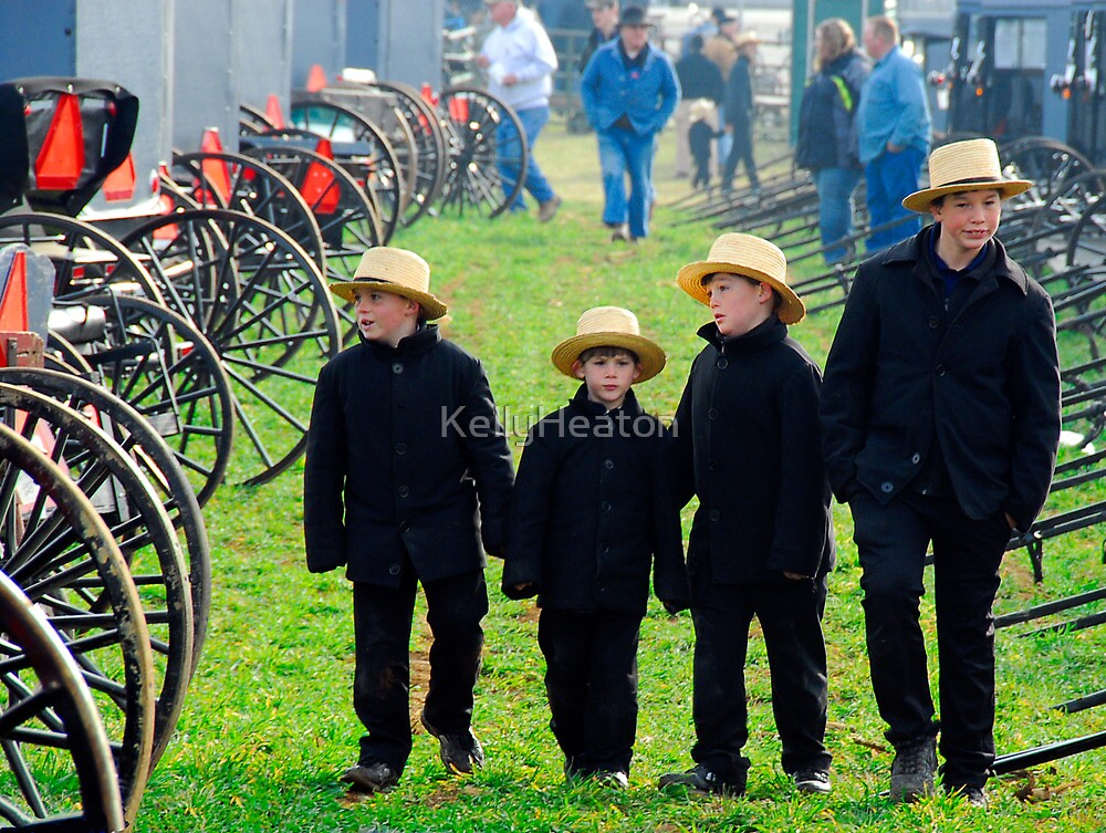 Amish Boys Walking Through Mudsale by KellyHeaton