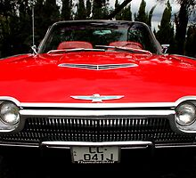 Ford Thunderbird 1963 Model Front End by Carole-Anne