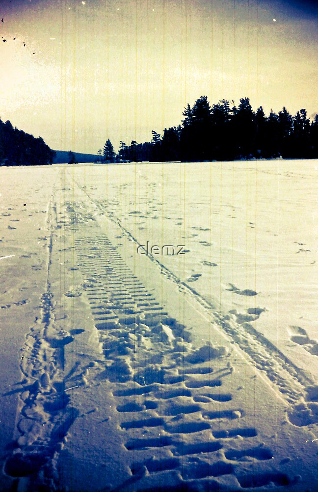 Artic day by clemz