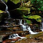 Beautiful Falls. by Julie  White