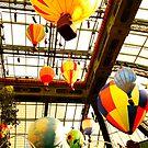 Hot air balloons  by taylormorrill