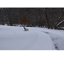 park bench in winter snow Photographic Print