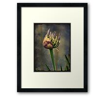 Spring Will Come Again Framed Print
