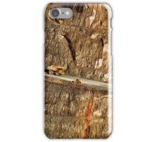 the super pit - kalgoorlie iPhone Case/Skin