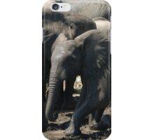 fun in the mud! iPhone Case/Skin