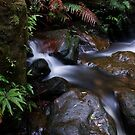 Which way to flow by peter  jackson