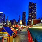 Navy Pier in Chicago by zl-photography