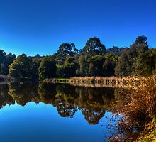 Lagoon by Gary  Davey (Jordy)