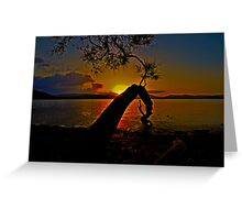 Sunset Point, Forster Greeting Card