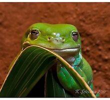 froggy by bluetaipan