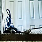 Staircase Slumber by Andrew Simoni
