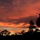 Sunset Panorama 23 Feb 2012 by Sea-Change