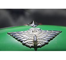 Silver Winged Photographic Print