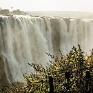 Victoria Falls by Christina Backus