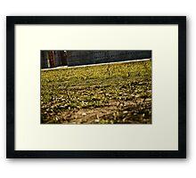 Green Park Framed Print