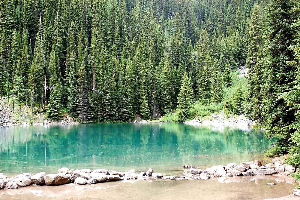 Mirror lake by WeLikeBears