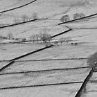 Dry Stone Walls by Kasia Nowak