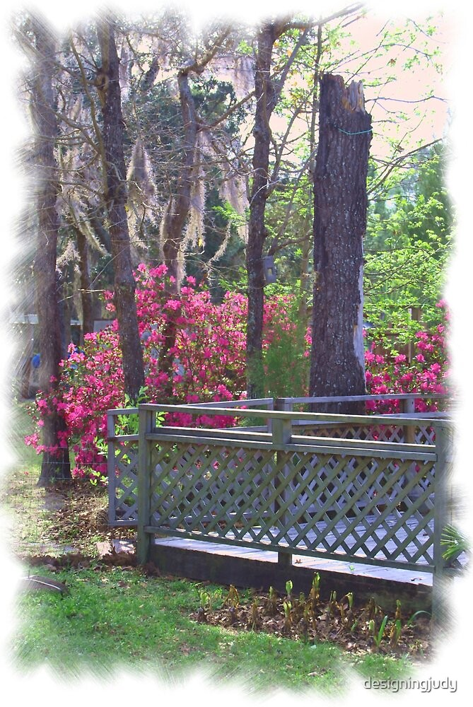 Spring has Sprung by designingjudy