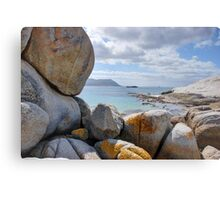 Cape Point, South Africa Metal Print