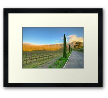 Franschhoek Vineyard, South Africa Framed Print