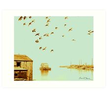 Flight at Peggy's Cove Art Print