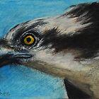 Osprey   by Lynn Hughes