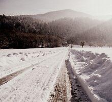 Winter Ways by Mojca Savicki