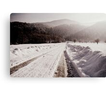 Winter Ways Canvas Print