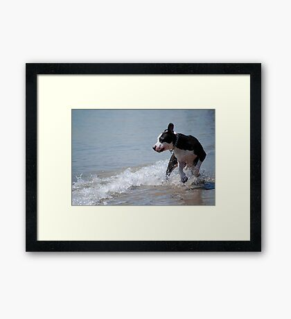 Wave Play Framed Print