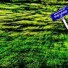 please keep off THE GRASS by Den McKervey