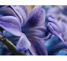 For Mum Photographic Print