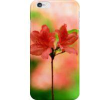 Ladies Series - Soft Highlights iPhone Case/Skin
