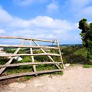 The other gate at Corfe Castle by ColinKemp