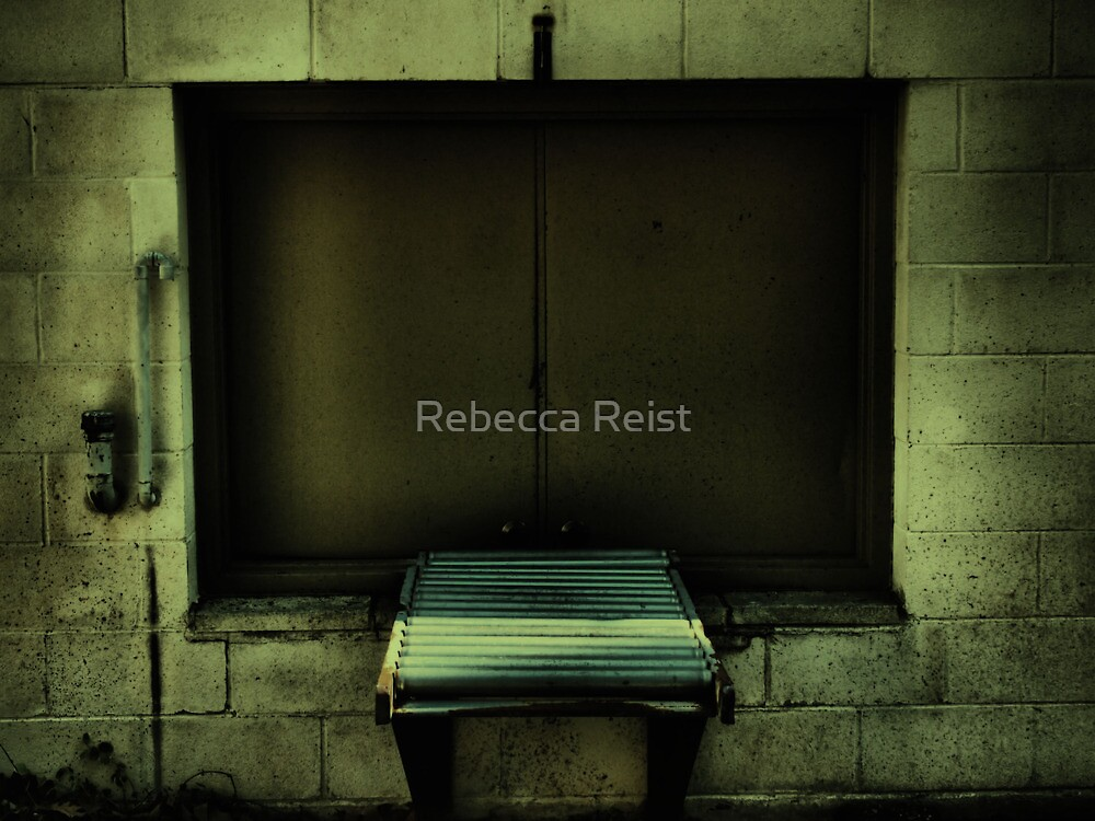 End of the Line by Rebecca Reist