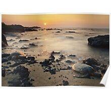 Sea Turtle Sunset Poster