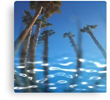 Water Palms Canvas Print