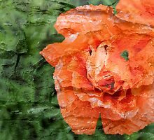 Bark layer Poppy by tdash